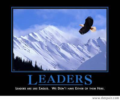 35 Demotivational Posters Anti Inspirational Posters